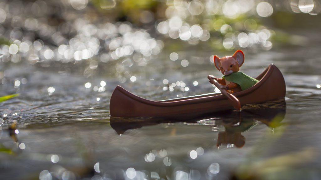 Lieam in canoe