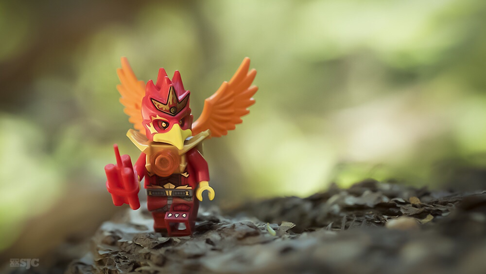 Lego-China-Forest-Toy-photography