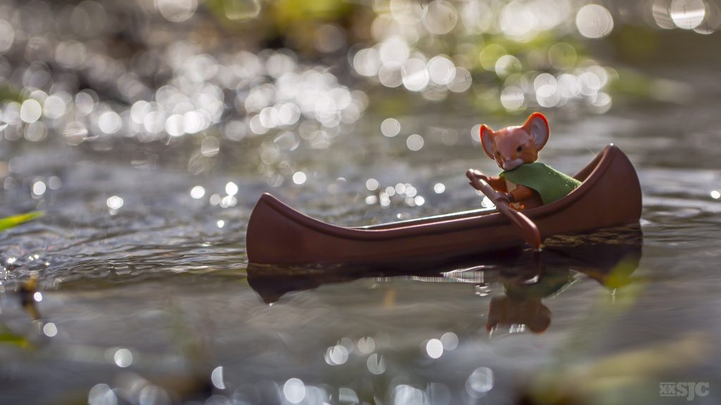 Lieam in canoe - reedited
