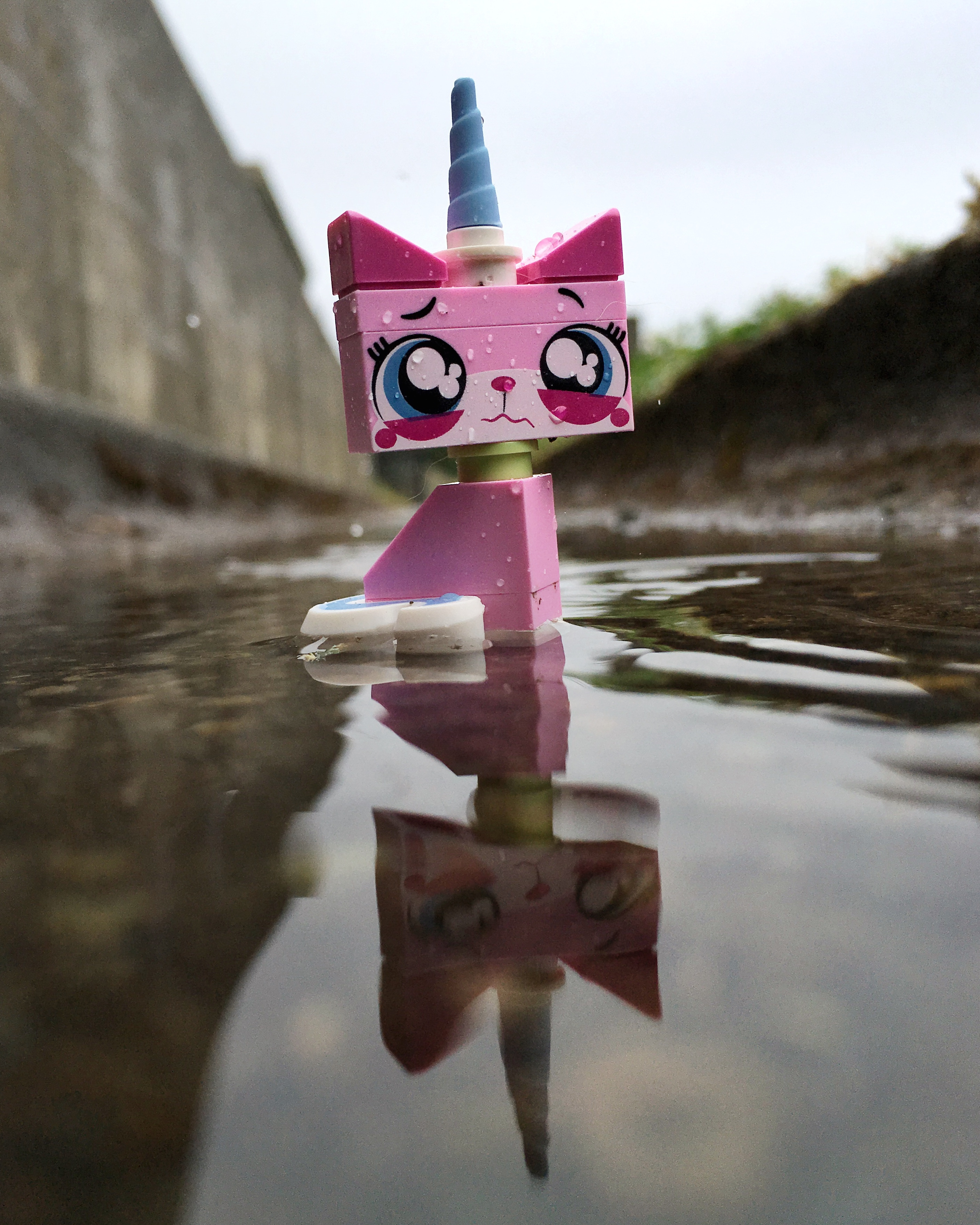 Lego-Unikittcy-Toys-outdoor-photography