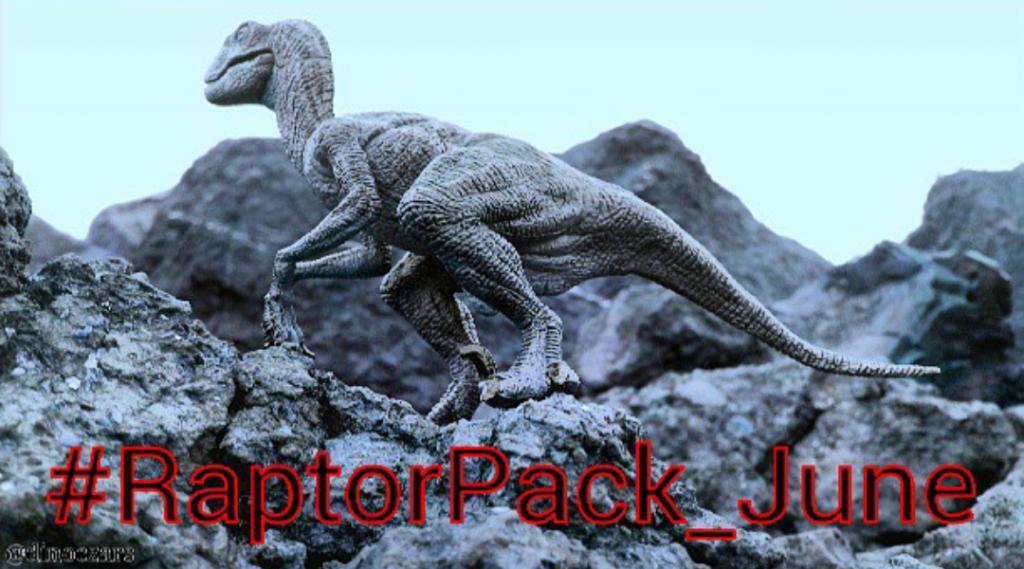 RaptorPack1