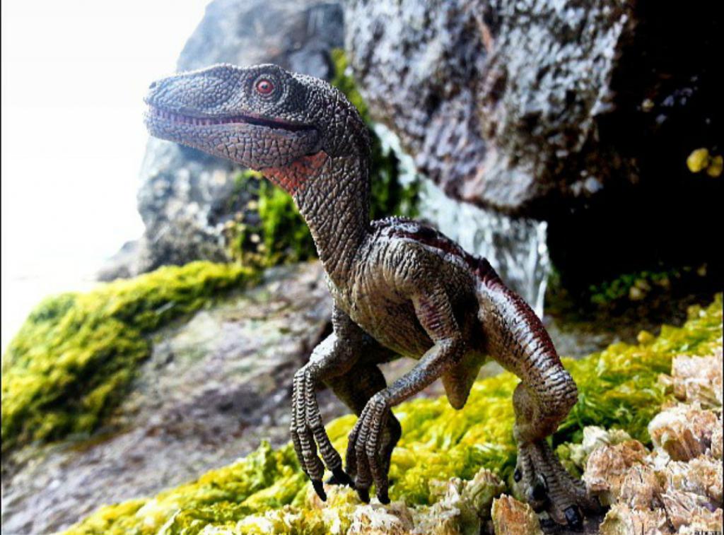 RaptorPack2