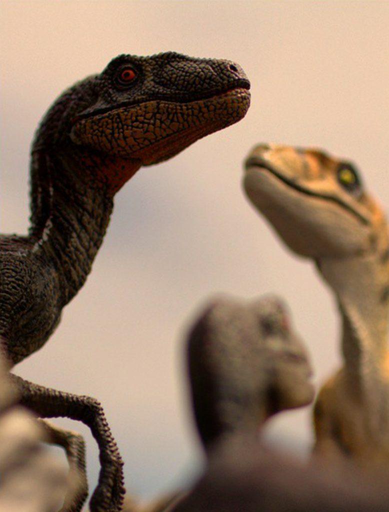 RaptorPack4-1