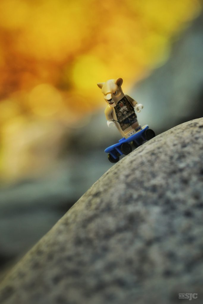 China-Skateboard-Lego-legography-xxsjc