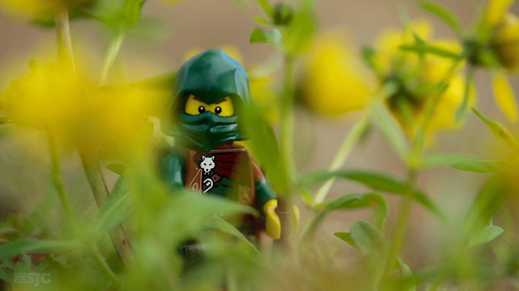 forest-warrior-legography-xxsjc