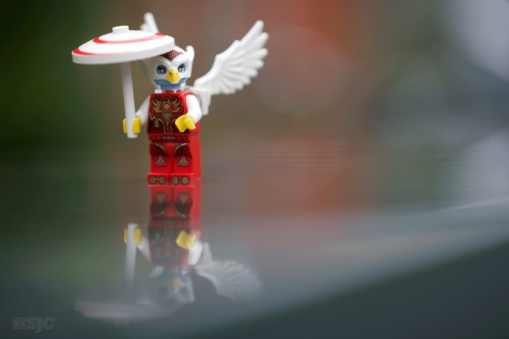 Chima-refelction-legography-xxsjc