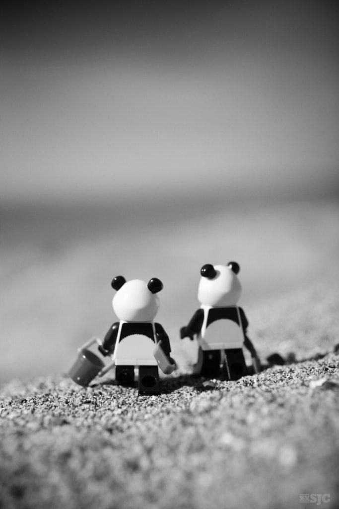 Panda-beach-legography-xxsjc