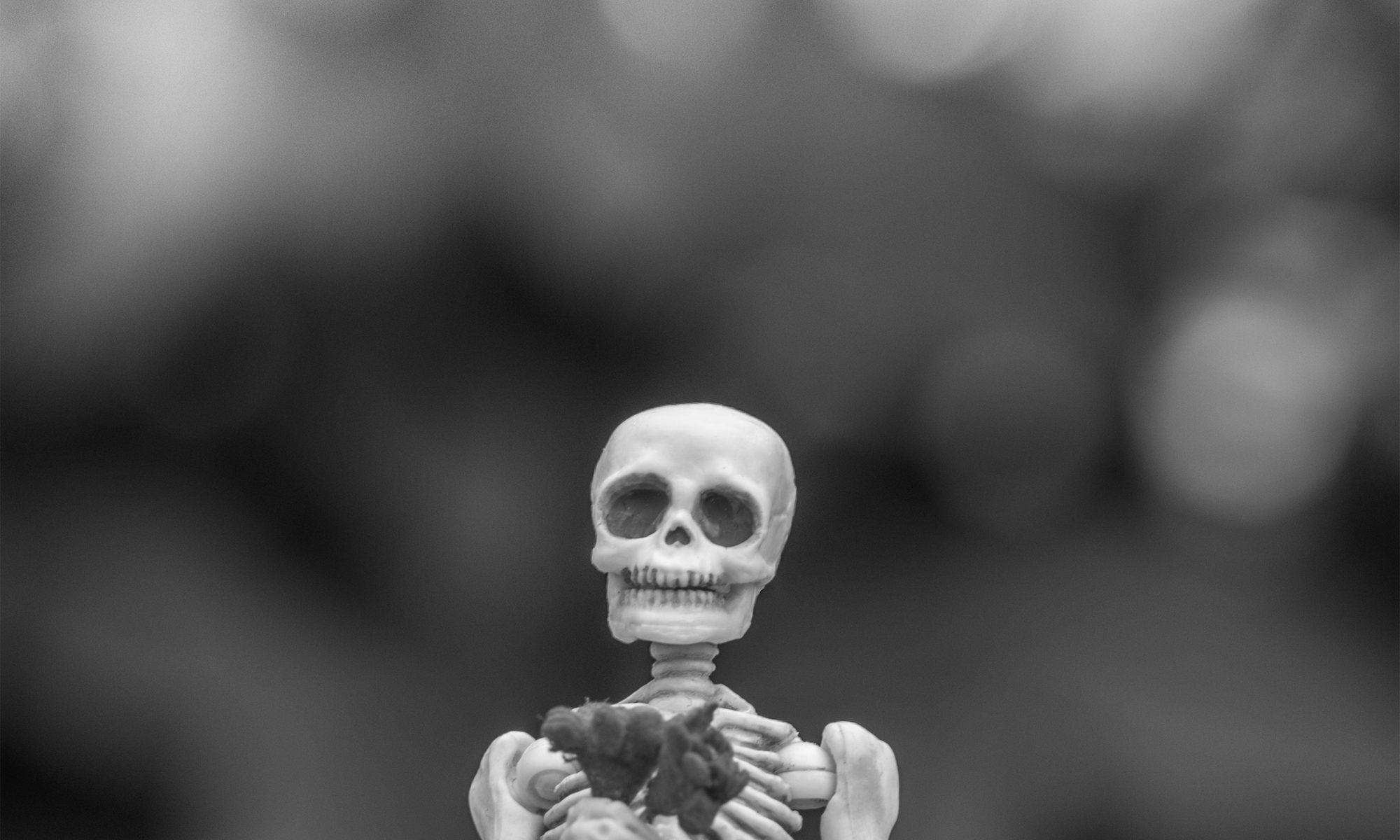 Eat_my_Bones